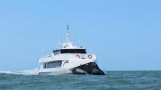 Freizer 28m Power Catamaran