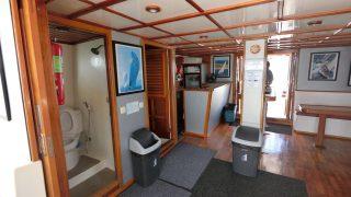 wood structure in catamaran