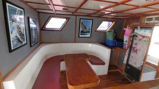 wood catamaran structure