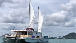catamaran going with white sail